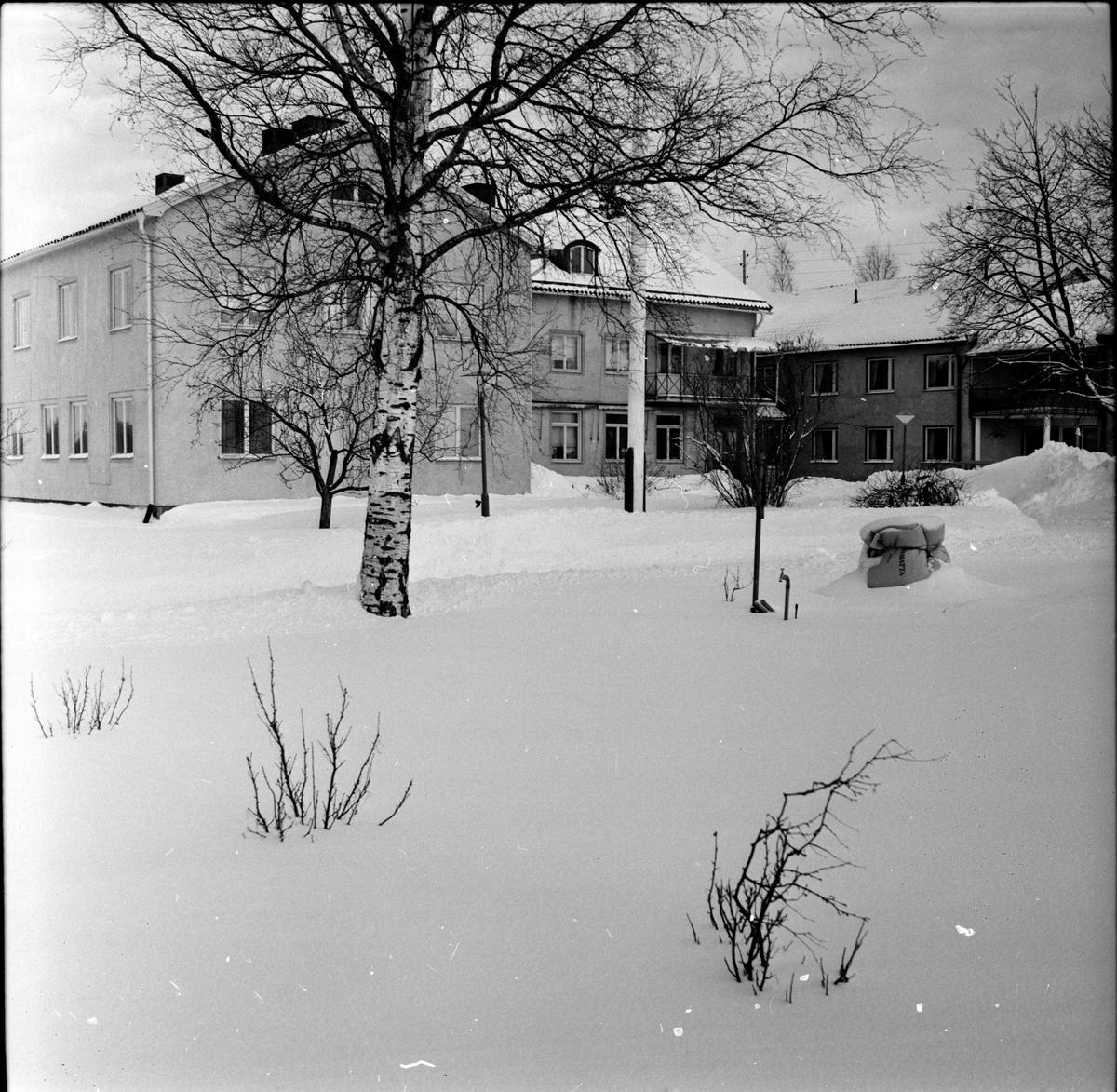 Arbrå, Stenbacka, Fru Annie Roos avtackas, Mars 1970