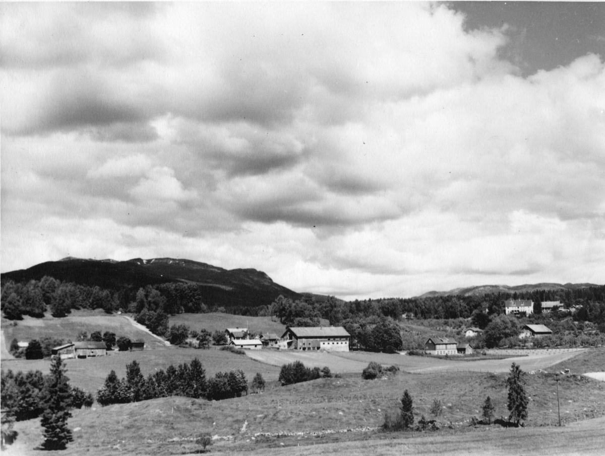 Gåraområdet 1930-åra. Lengst til venstre Vestgarden med dei gamle husa.