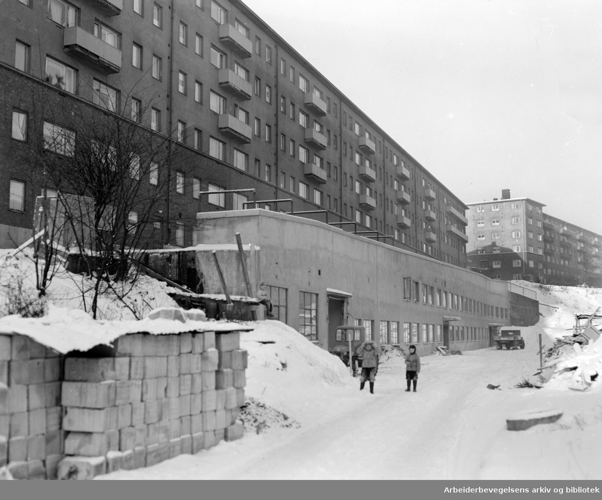 Uelands gata 57. Iladalens kontorbygg. Januar 1955