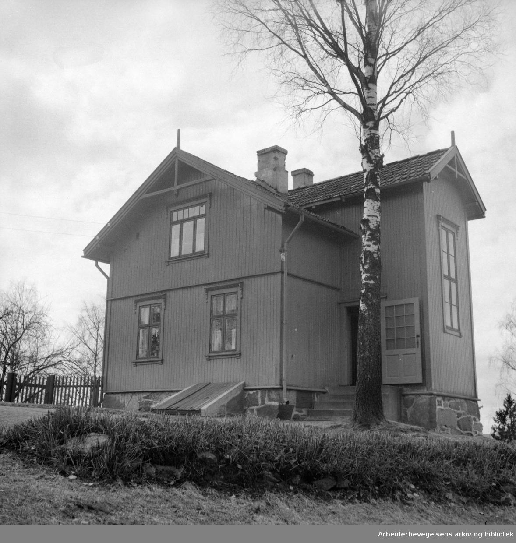 Solemskogen skolestue. April 1953