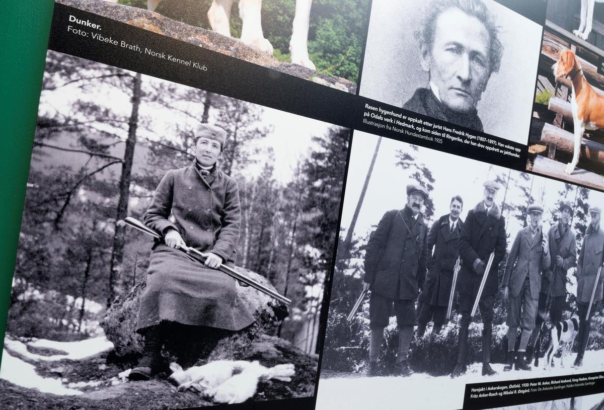 Fra utstillingen Tråkk på Norsk skogmuseum. Utstillinger.