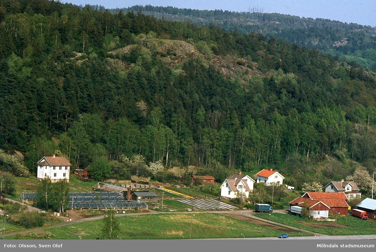 Bebyggelse i Toltorps by i Mölndal, år 1983. T 3:8.