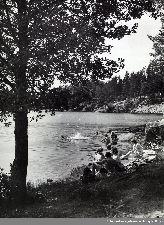 Badeliv ved Ulsrudvannet i Østmarka, juni 1954.
