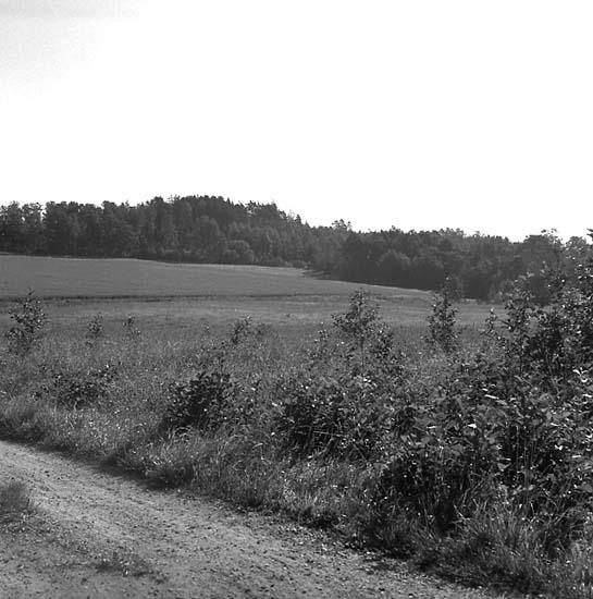 Herrestad socken. Fröland. Stenåldersboplats 21a och b. Sedd från sydväst.