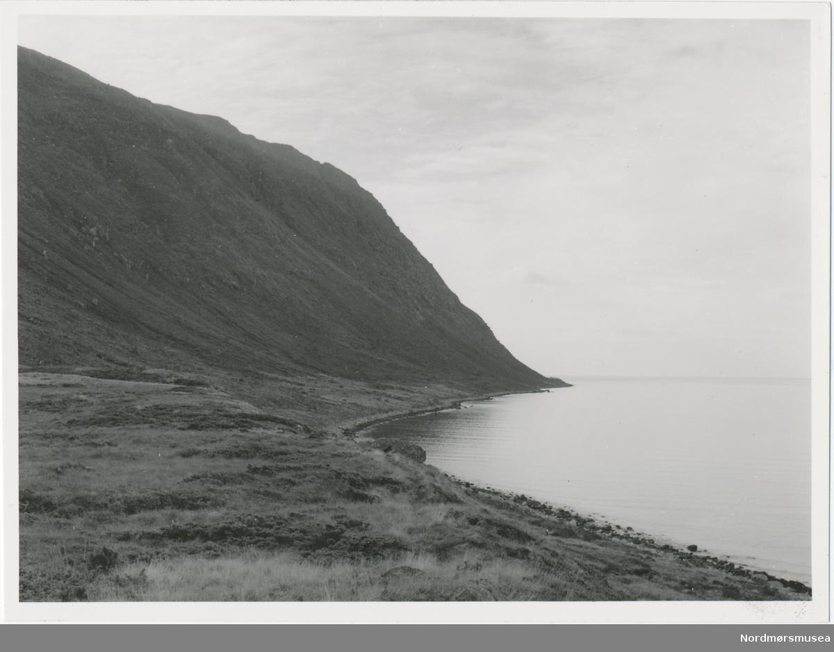 Prospektfotografi av Kalvestad-marka på Sula.