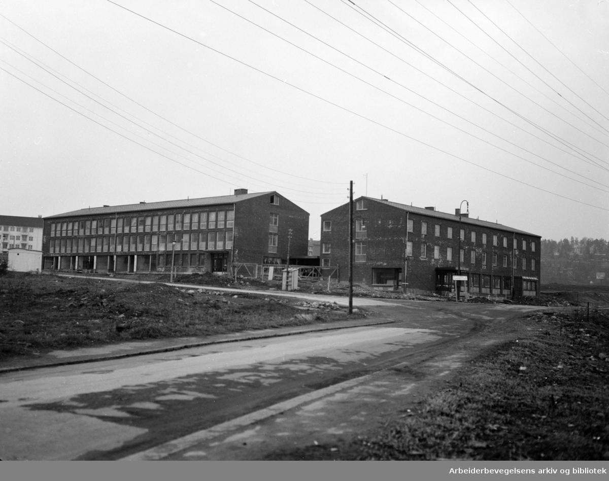 Kokk og Stuertskolen. Mai 1954