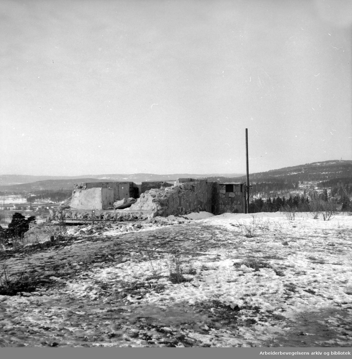 Korsvollparken etter tyskernes befestningsanlegg. Januar 1947