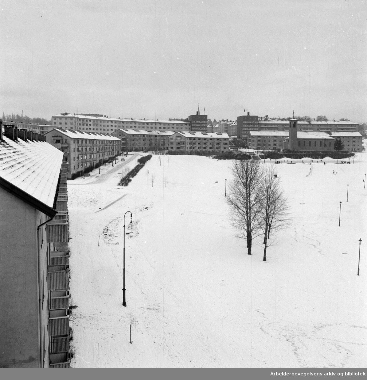 Iladalen. Februar 1957