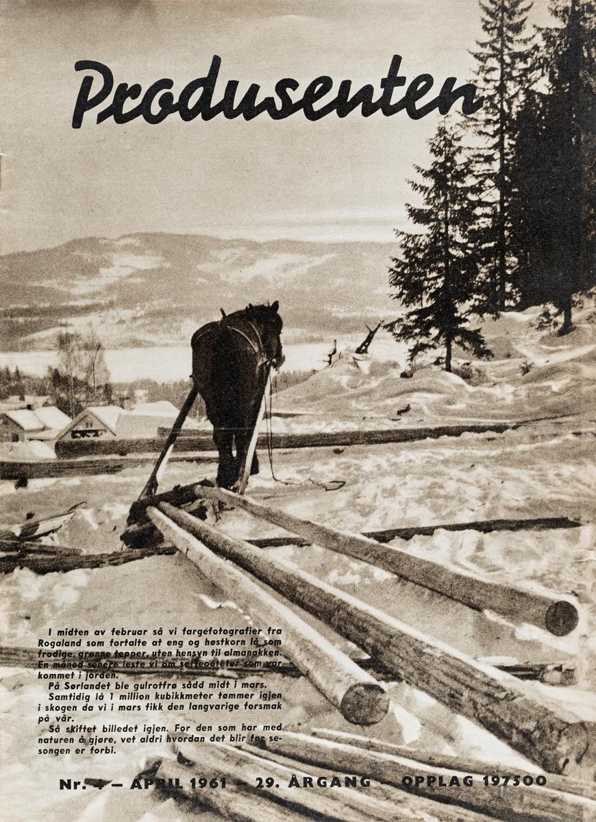 Faksimile av forsidebilde fra «Prodsenten» - et månedsmagasin som ble utgitt av Landbrukets sentralforbund.  Denne utgaven er nr. 4 1961, og kom altså i april dette året.  Bildet viser en dølahest som er forspent en stutting med tre forholdsvis granne, barkete tømmerstokker.  På bakken ligger fortsatt det som må ha vært underlagsstokker for ei større velte.  Fotografiet er tatt i skogbrynet, på en bakkekam ovenfor et gardstun, der vi skimter to av våningshusa.  Nedenfor ligger en islagt og snødekt innsjø med en markant åsrygg på motsatt side.  Dette er et typisk seinvintermotiv fra den tida det fortsatt var vanlig å bruke hest til tømmertransport.  Redaksjonen for «Produsenten» har valgt å knytte noen betraktninger om årstidenes og værlagets vekslinger til dette motivet (nederst til venstre på bildeflata): «I midten av februar så vi fargefotografier fra Rogaland som fortalte at en og høstkorn lå som frodige, grønne tepper, uten hensyn til almanakken.  En måned senere leste vi om settepoteter som var kommet i jorden.  På Sørlandet ble gulrotfrø sådd i mars.  Samtidig lå en million kubikkmeter tømmer igjen i skogen, da vi i mars fikk den langvarige forsmak på vår.  Så skiftet billedet igjen.  For den som har med naturen å gjøre, vet aldri hvordan det blir før sesongen er forbi. »