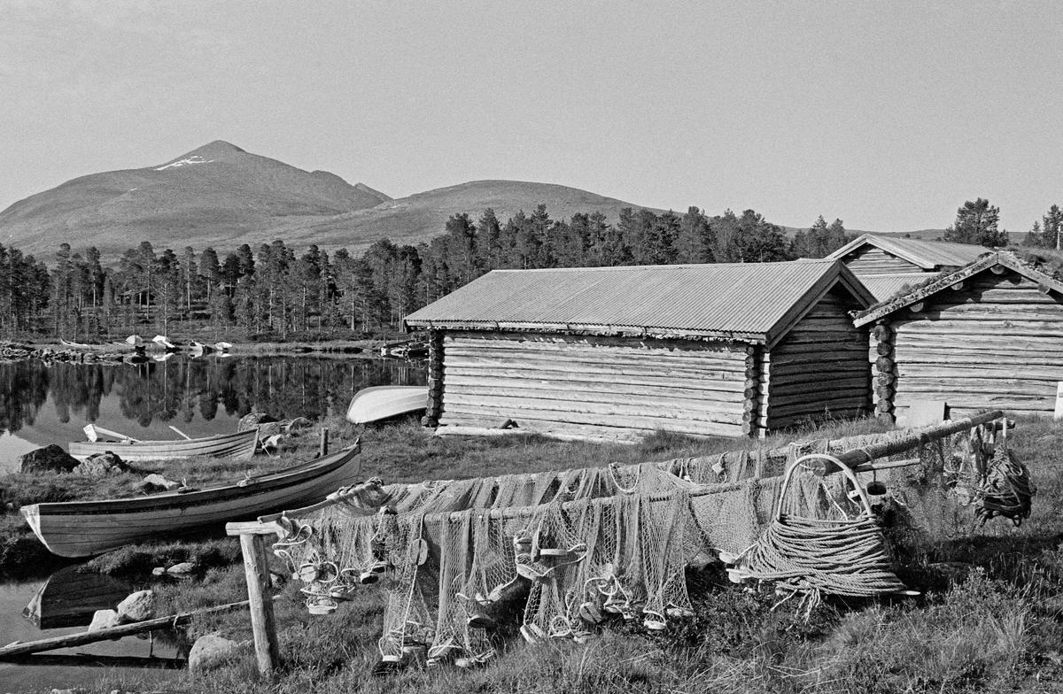 Idyll fra innlandsfiskeværet Fiskevollen ved Sølensjøen i Øvre Rendalen.  I forgrunnen ser vi hvordan fiskere tørket nøter og tausuler på en såkalt «notross».  Bildet viser også båter og bygninger som ble brukt under fisket.  Sølensjøen ligger snaut 700 meter over havet og cirka tre mil øst for de gardene i Øvre Rendalen hovedbygd som ha har fiskerettigheter i sjøen. Inntil det i perioden 1939-1941 ble bygd bilveg på denne strekningen, foregikk transporten til og fra sjøen med kløvhester på barmark og på sleder vinterstid. Lange avstander og tidkrevende transportmetoder gjorde det nødvendig å etablere et bygningsmiljø ved sjøen for innkvartering av fiskere, oppbevaring av båter, redskaper og fisk. Det viktigste fisket foregikk i den søndre delen av sjøen, men der lå fjellmassivet Sølen en barriere mot bygda. Fra Fiskevollen ved den nordvestre delen av sjøen derimot, var det greit farbart terreng vestover mot bygda. Fiskeværet lå i ei lun vik hvor fiskebåtene kunne ligge skjermet for vind, og hvor husene kunne plasseres noenlunde lunt til i terrenget. Fiskerne bodde på Fiskevollen under sommerfisket. Under høstfisket etter røye sør i sjøen bodde fiskerne i fire felleseide buer i nærheten av gytegrunnene. Fiskefangstene ble imidlertid rodd opp til Fiskevollen, hvor de ble lagret inntil de kunne kjøres til bygds på sledeføre. Det var tre bygningstyper på Fiskevollen: Naustene, som la nede i strandsonen, buene fiskerne bodde i og kjellene de oppbevarte fiskeutstyret i høyere oppe på strandbakken.