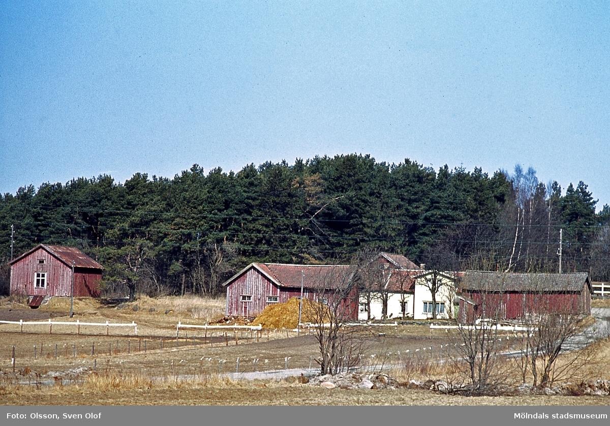 Bebyggelse på Pålsegården 6 i Balltorp, Mölndal, år 1964. Ladan till vänster tillhör Pålsegården 4, som hade utmark här. På 1990-talet byggdes den om till stall.