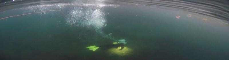 Bilde av dykker under vann, luftbobler som stiger opp og flere maneter i overflaten.