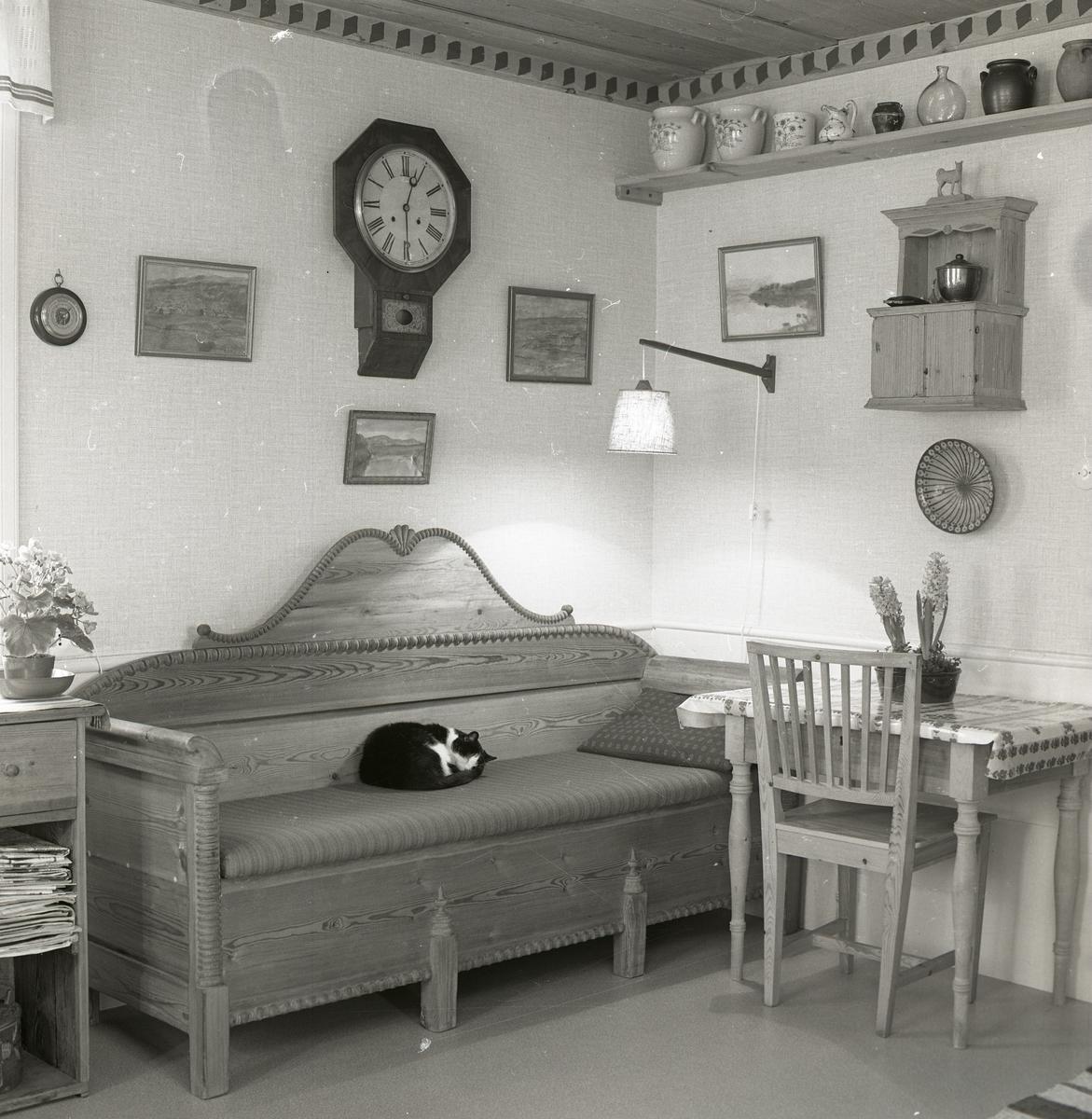 Ett av rummen på gården Sunnanåker, 1970. I rummet finns bland annat en soffa där en katt sover.