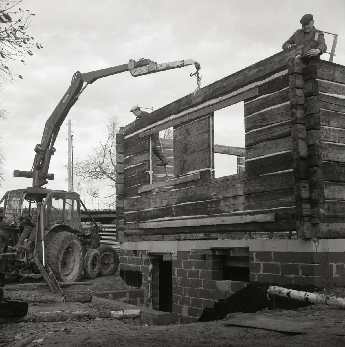 Ett nytt bostadshus av timmer monteras ihop med hjälp av en traktor vid gården Sunnanåker, 1967.