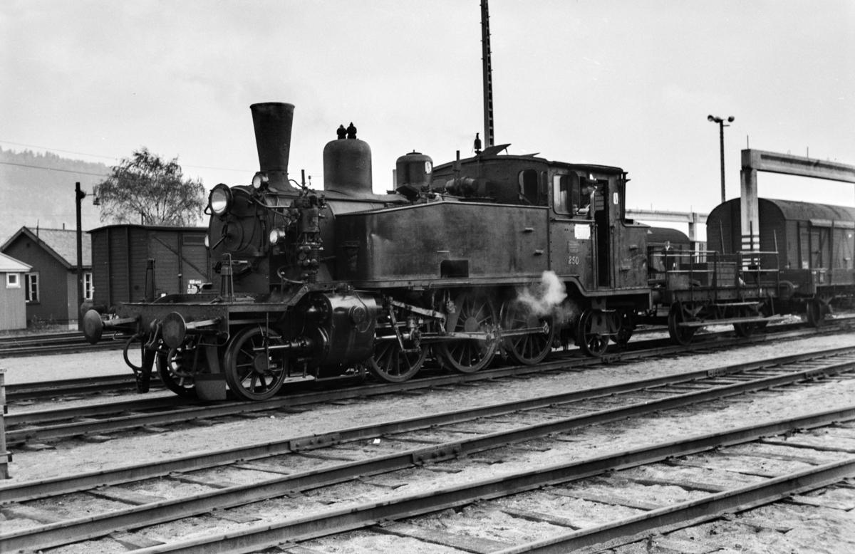 Damplokomotiv type 20b nr. 250 i skiftetjeneste på Sundland ved Drammen.