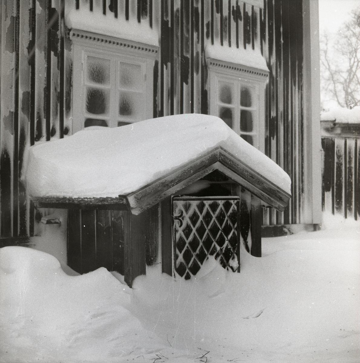 Ett snötäckt hus med jordkällaringång, 1987.