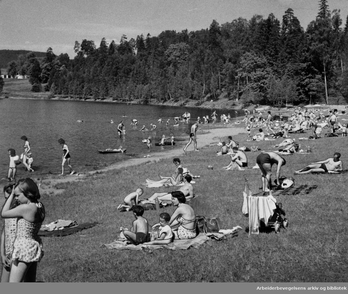 Bogstadvannet. Juni 1963