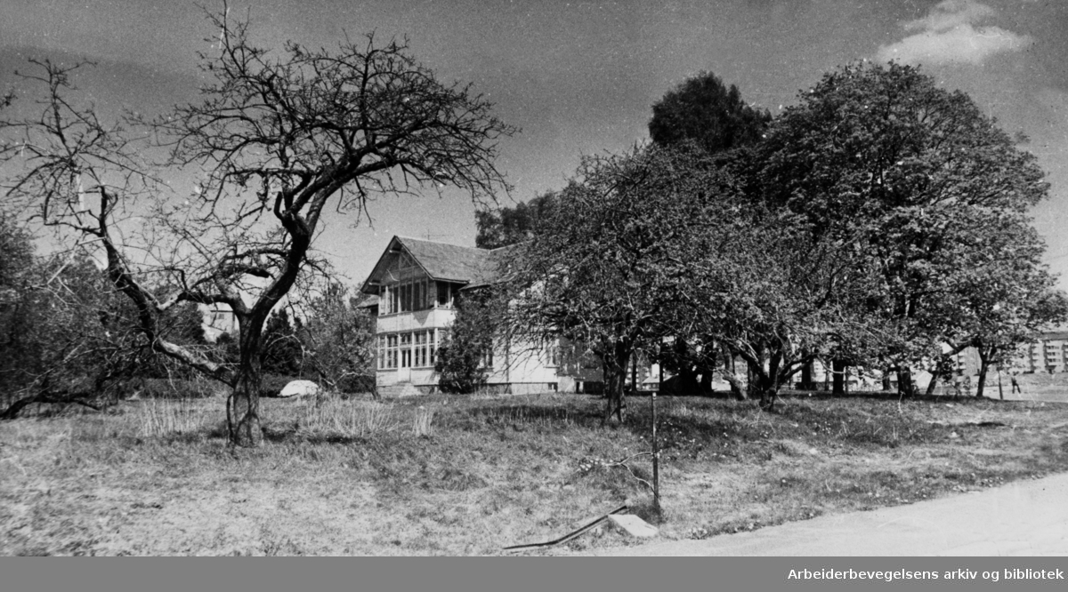 Bredtvet gård. Juni 1974