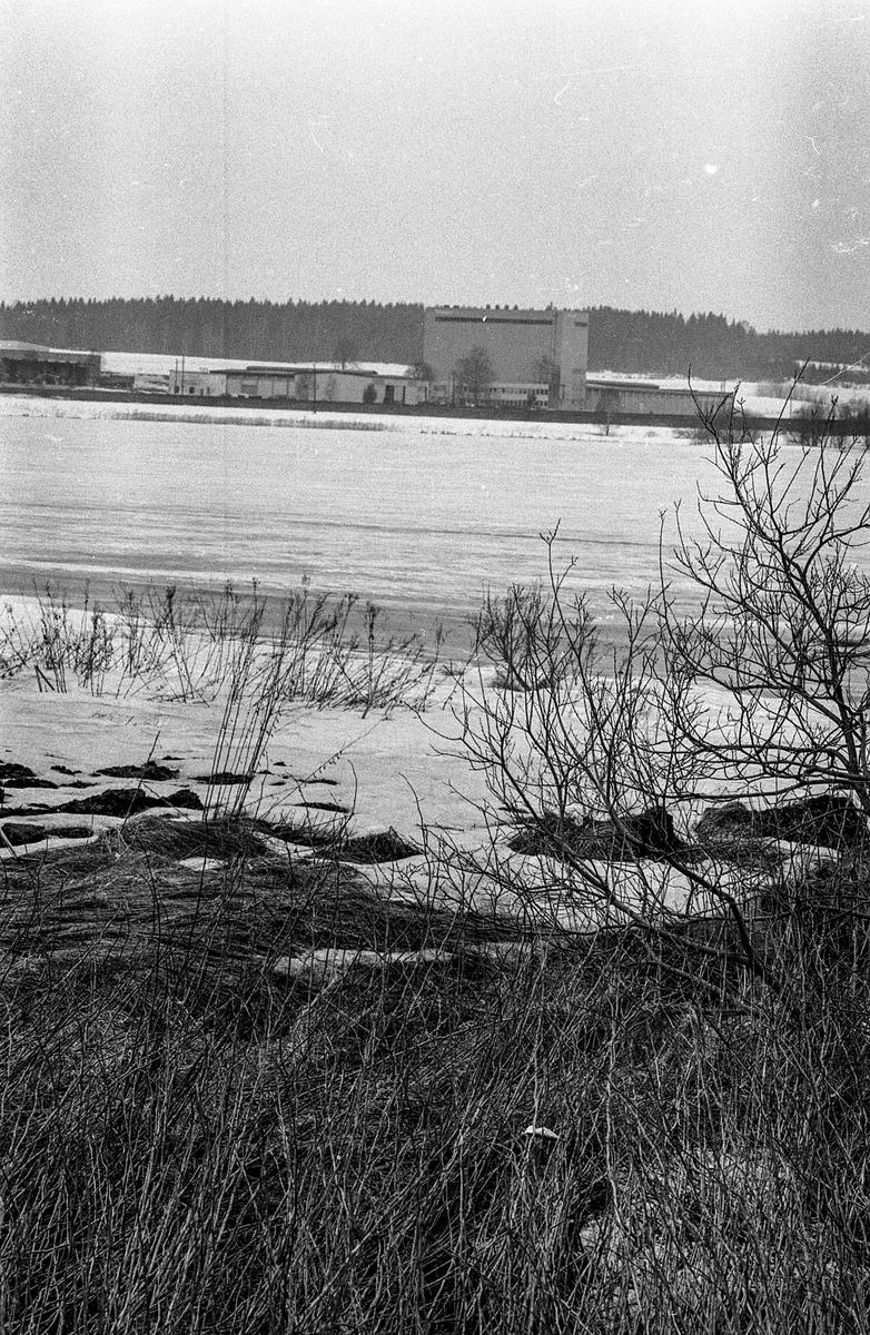 Østensjøvannet i Ås skal renses, Felleskjøpet i bakrunnnen.