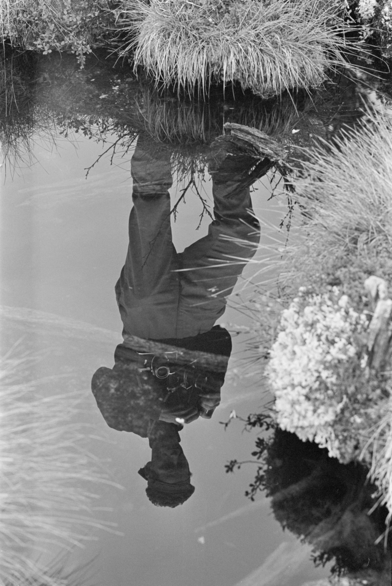 En mann fotograferer et myrlandskap ved Røros.