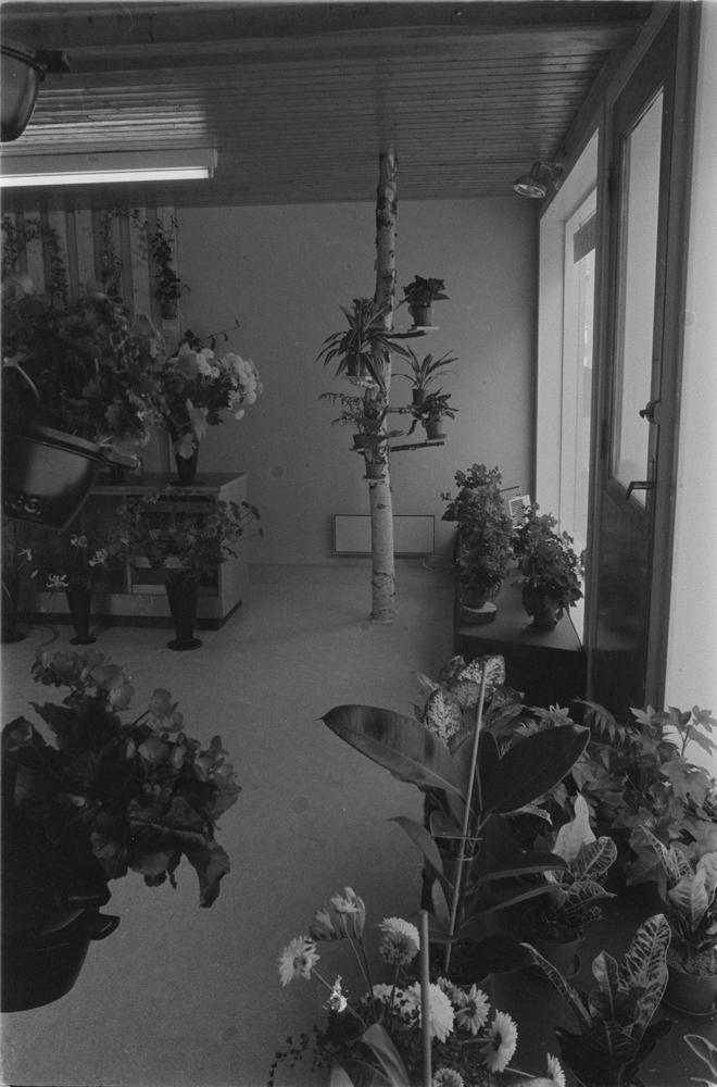 Blomsterbua, inne i butikken.