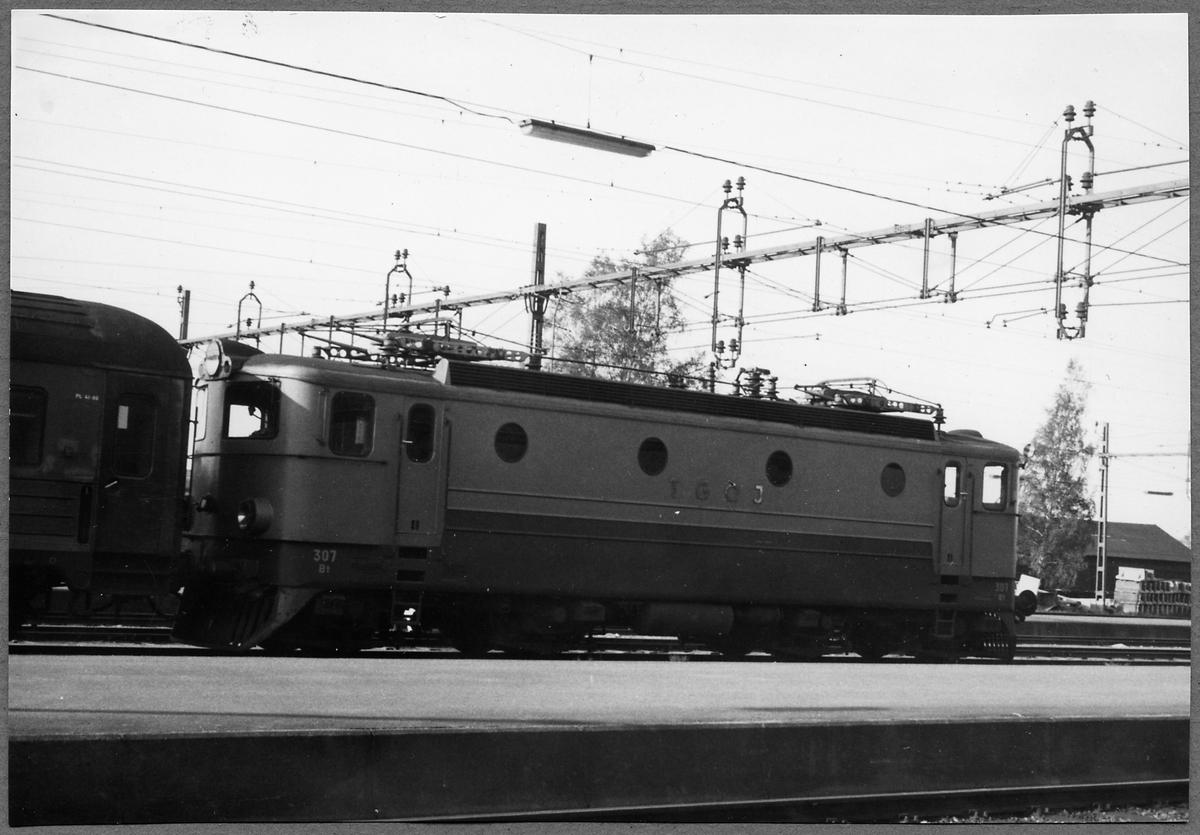 Tfv Grängesberg - Oxelösunds Järnvägar, TGOJ Bt 307. Loket tillverkades 1954 av ASEA och Nohab.