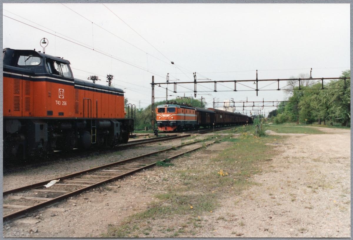 Tågmöte med Statens Järnvägar, SJ T43 256 samt SJ Rc2 1071 med godsvagnar i Kimstad.