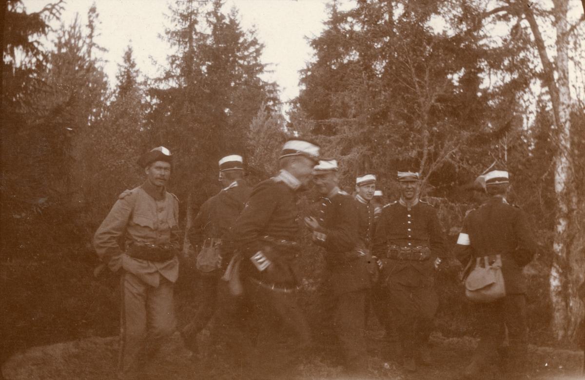 Soldater från Göta livgarde I 2 vitt band runt mössan.