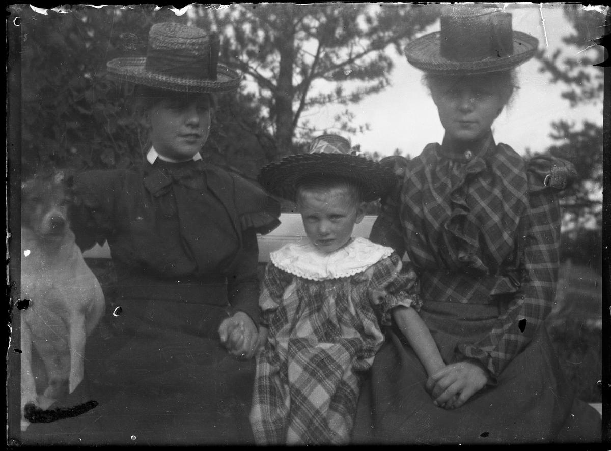 Antatt fotosamling etter Anders Johnsen født 6.8.1849. Død 6.5.1933. Foretningsmann og industrigrunder. Født på Varpet i Skien, men etablerte seg med hele sin familie på Nystrand, Eidanger. Fra 1874 drev han, og senere eide Falkum Sæbefabrikk. Han drev videre Dampskibselskap, og var en av drivkreftene bak etableringen av Breviksbanen. Utendørsportrett av to unge damer med barn og hund.