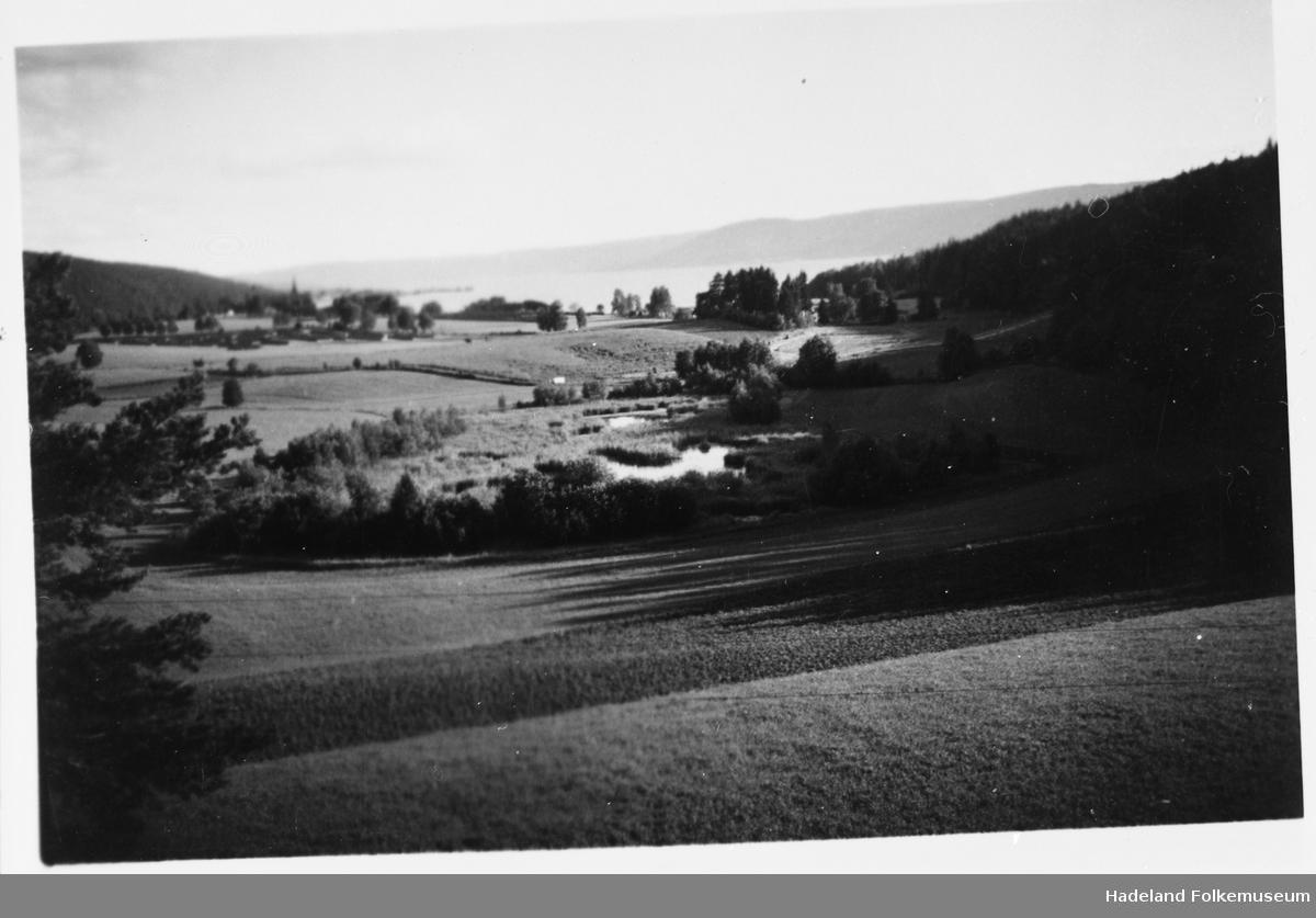 Landskap ved Røykenvik. Nes kirke og Randsfjorden skimtes i bakgrunnen.