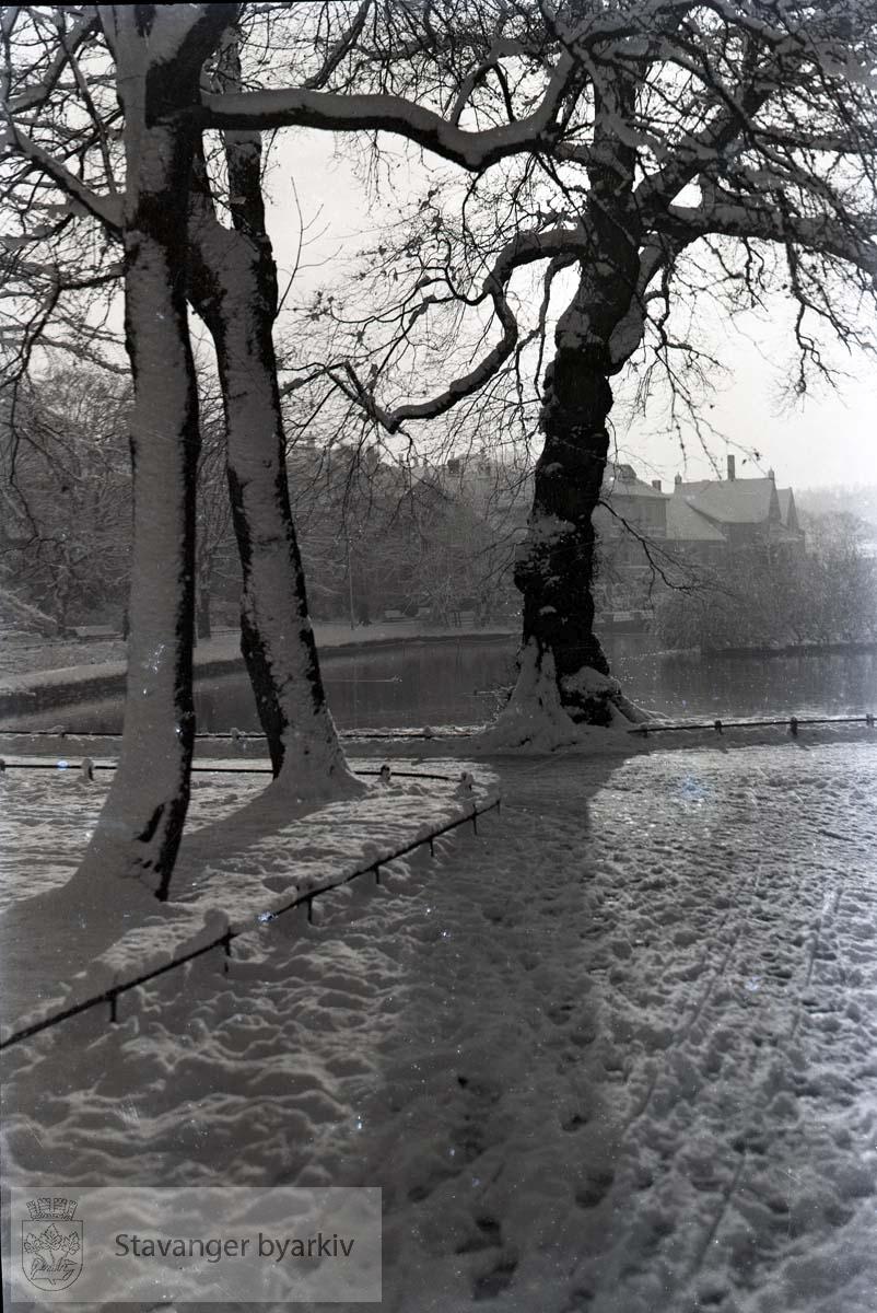 Breiavatnet og byparken i vinterdrakt
