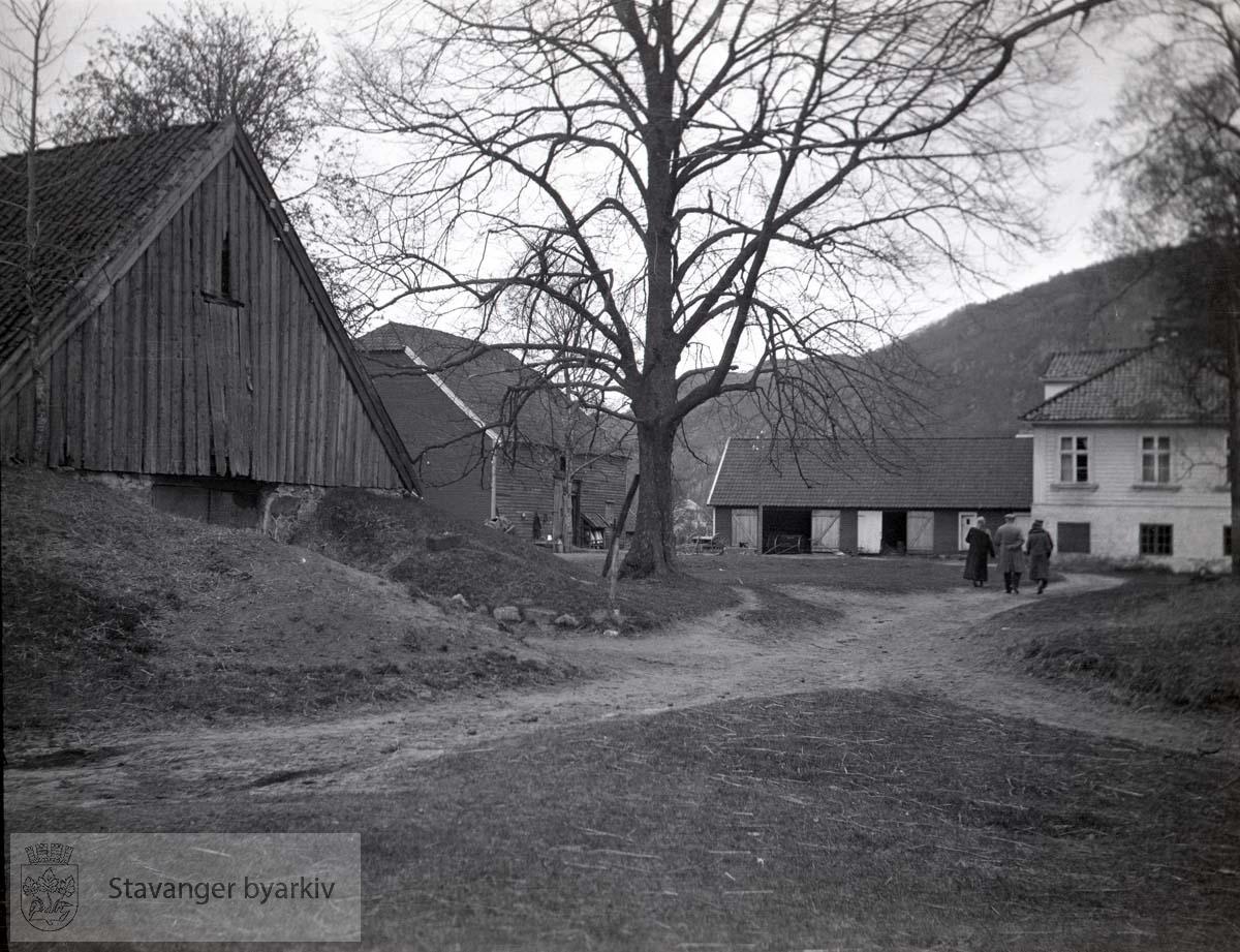 Våningshus og driftsbygninger på Øye gård
