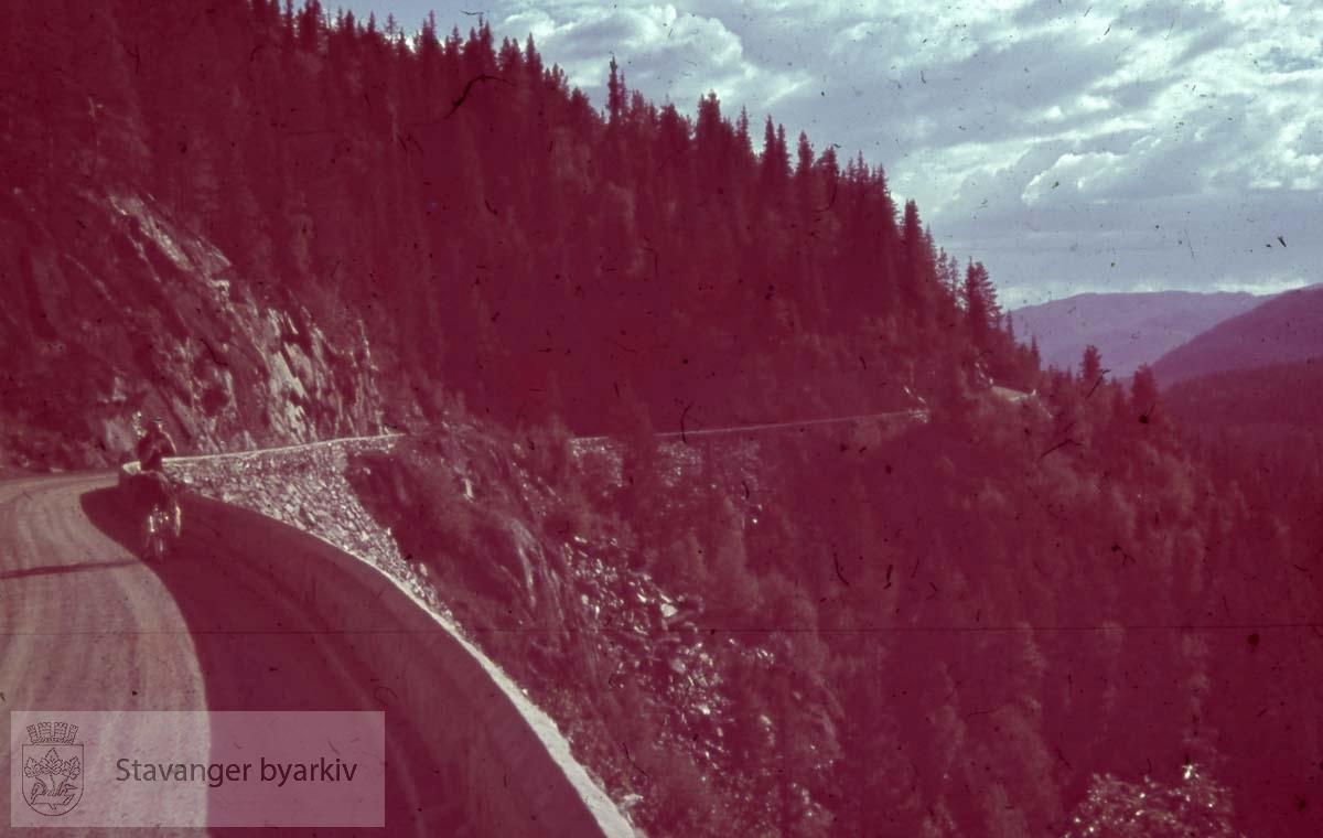 Syklist langs landevei