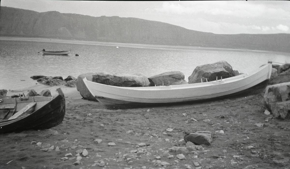 Sjøbask fra Tana