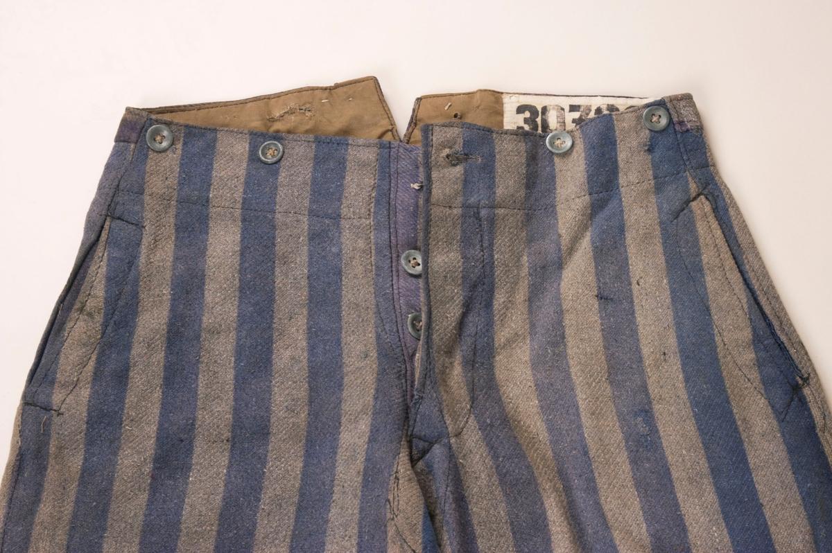 siste ankomst Kvinne Tynn Store størrelser Shorts Bukser