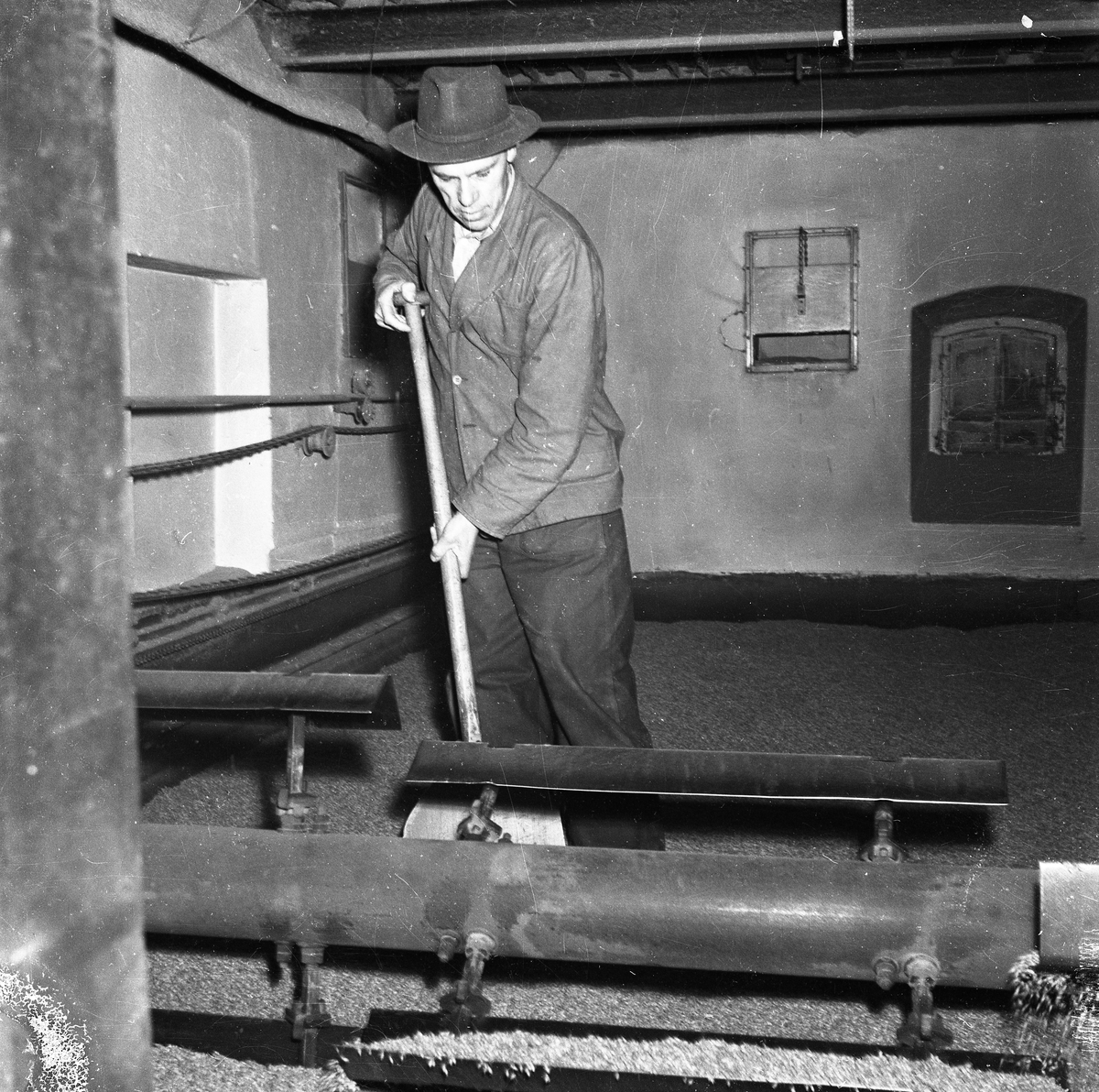 Arboga Kvarn och Maltfabrik, interiör. En man arbetar i maltkällaren. Han har en spade i händerna.  Mältan (korn som legat i blöt i tre dygn) måste vändas två gånger om dagen under de åtta dagar groningsprocessen pågår.   Det som kom att bli Arboga Kvarn och Maltfabrik anlades 1821 av Jonas Örström. Kvarnrörelsen startade 1915. Vetemjöl av märket Guldsnö producerades här.  Kvarnrörelsen upphörde 1967 medan maltproduktionen fortsatte till 1972.  Läs om Arboga Kvarn och Maltfabrik: Hembygdsföreningen Arboga Minnes årsböcker från 1979 och 1999 Reinhold Carlssons bok Arboga objektivt sett