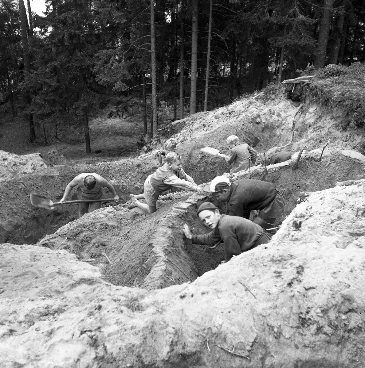 Barnleken. Ett gäng pojkar gräver gropar och gångar. De är i skogskanten. Inget årtal angivet av fotografen.
