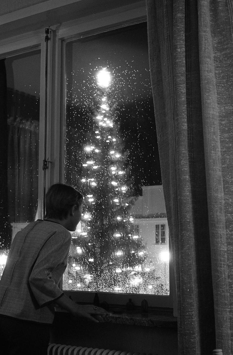 Eva ser ut genom fönstret. Julgranen, på Stora torget, är tänd.
