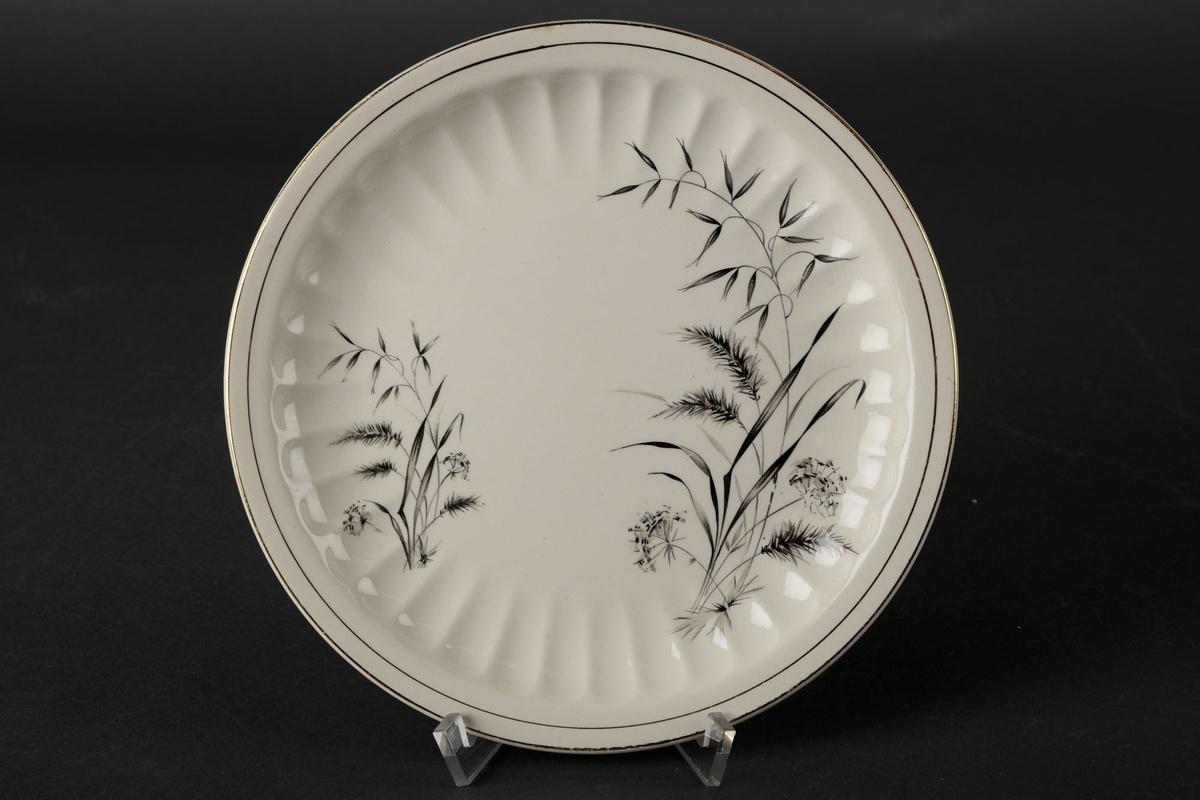 Hvitt asjett med bølgete kanter, to gull-sirkler, og bilde av to planter.