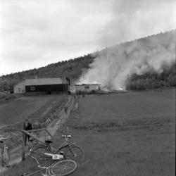 En ladugårdsbrand vid Silje gård där 15 kor blev lågornas ro