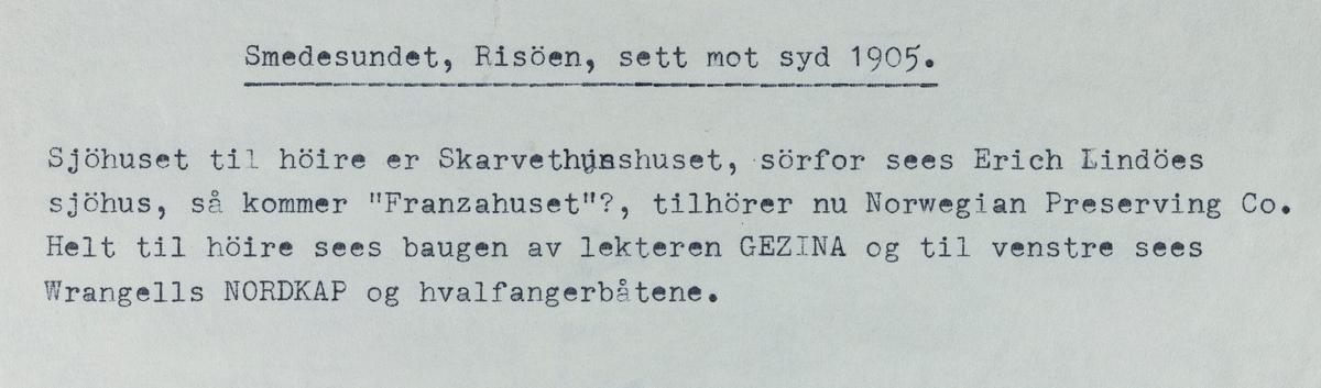 Smedasundet, Risøy, sett mot syd, 1905.