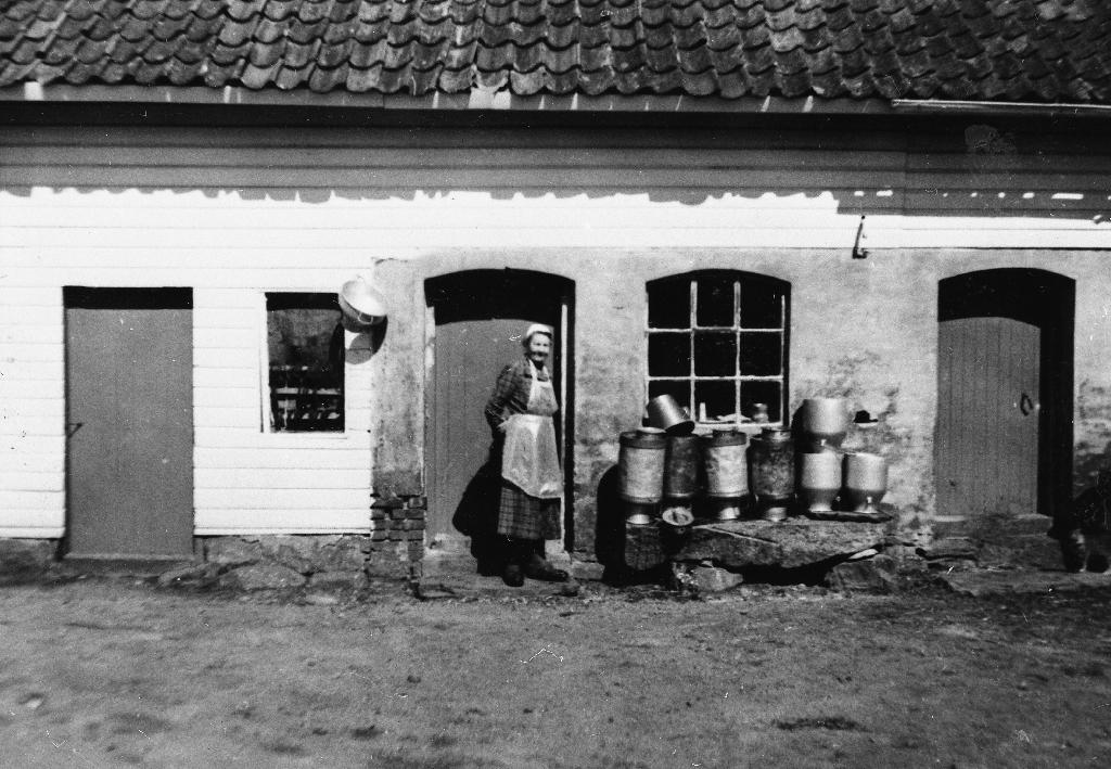 Serine Svensdtr. Njå (1883 - 1964) i fjøsdøra. Holva mjølkespann på kilt stein til venstre. Silen heng på veggen.