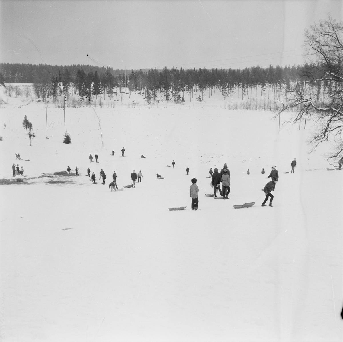 Full fart i Torslunda, Tierps socken, Uppland, februari 1972
