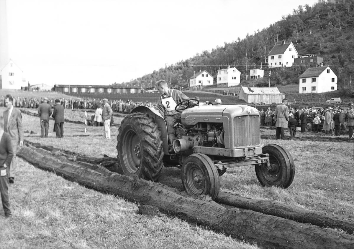 Pløying med traktor på Sama. Sommerfjøsveien i bakgrunnen.