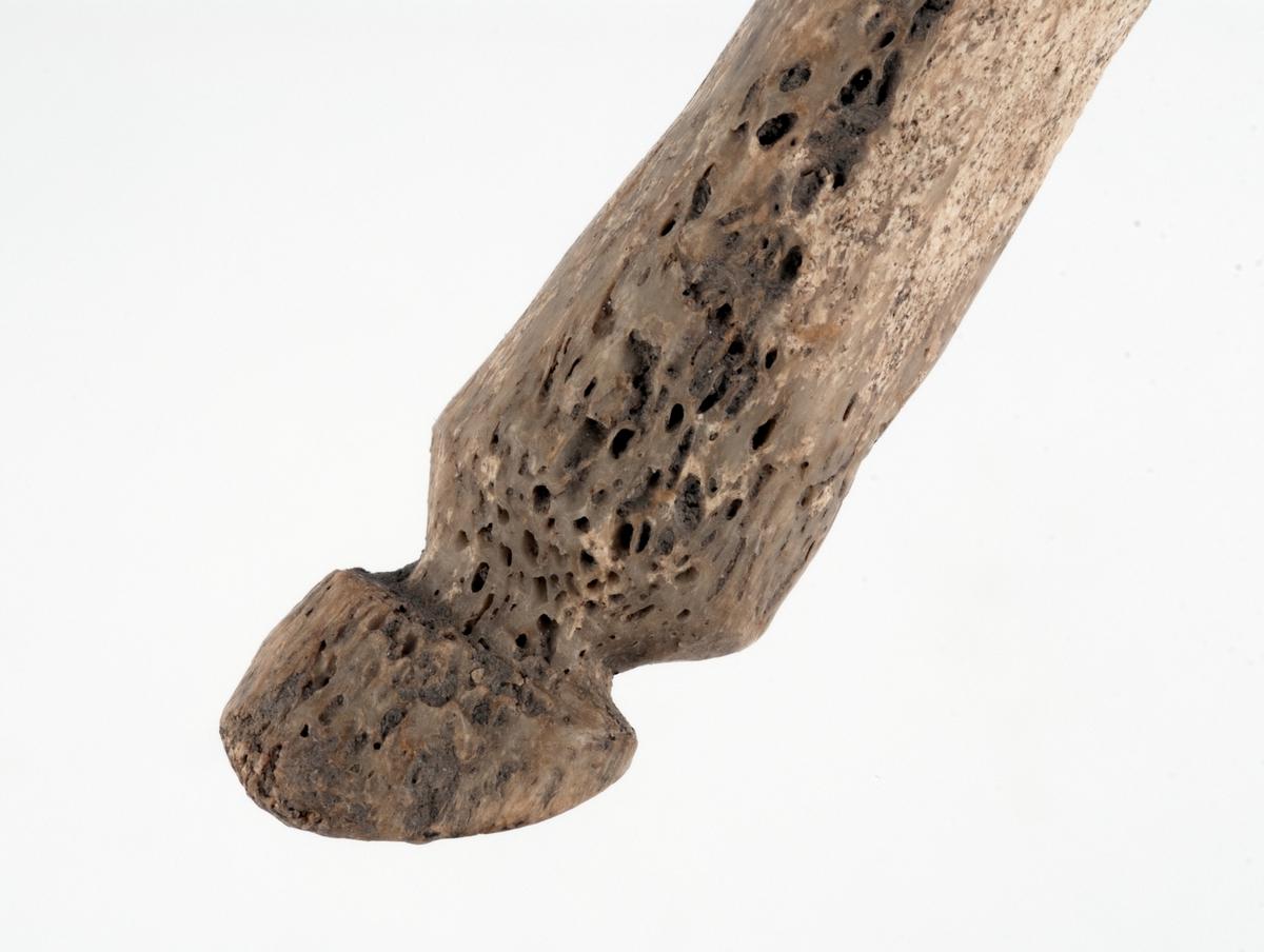 Föremål av ben. Runt, svagt böjt med knopp i ena änden. Spetsen avbruten. Kan möjligen vara en stylus.