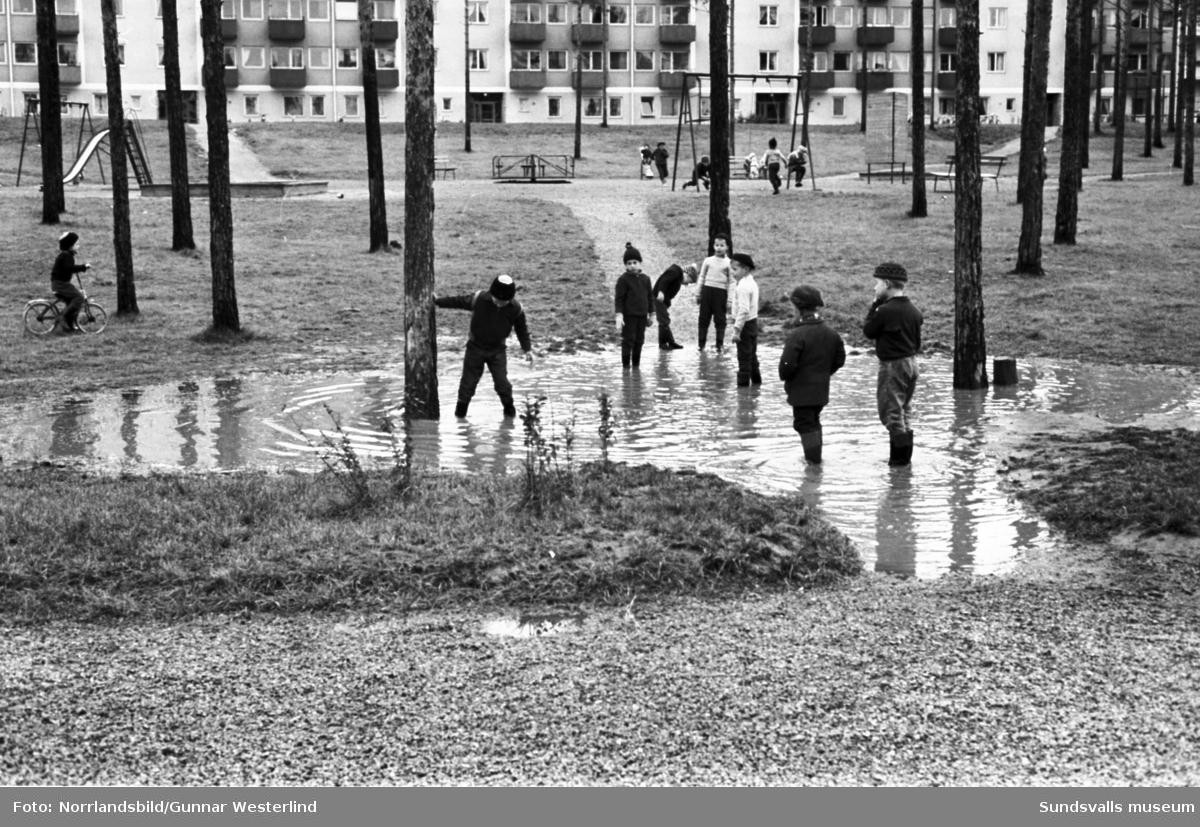 En grupp barn uppskattar att det blivit en mindre översvämning invid lekparken i bostadsområdet Tallbacken i Timrå.