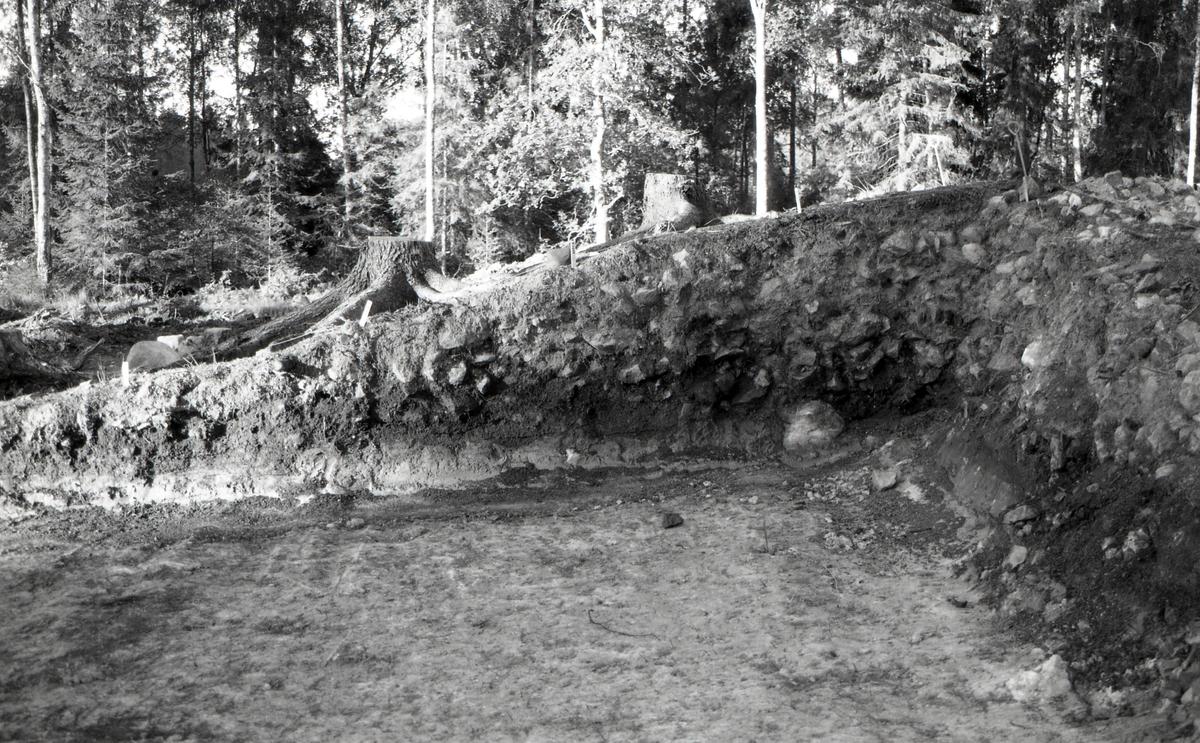 A 6460, profil, RAÄ 626. Foto från nordnordöst.