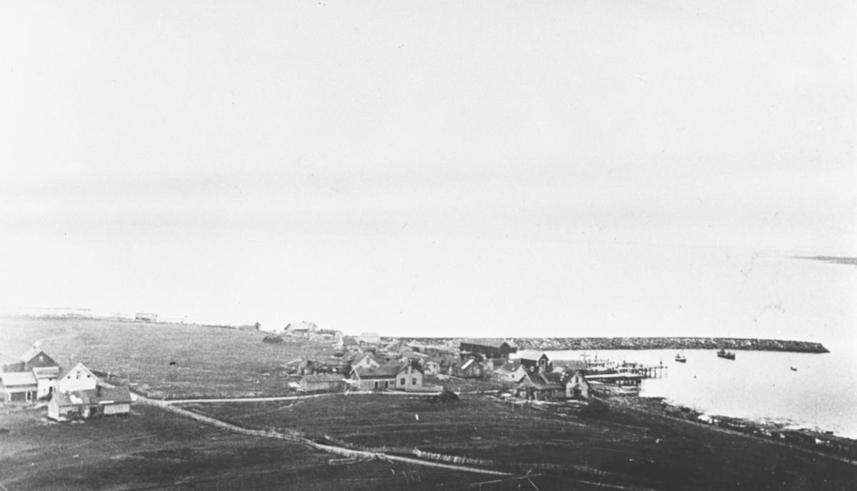 Ekkerøy sett fra fjellet. Nesset med havna og moloen. Året er 1938.