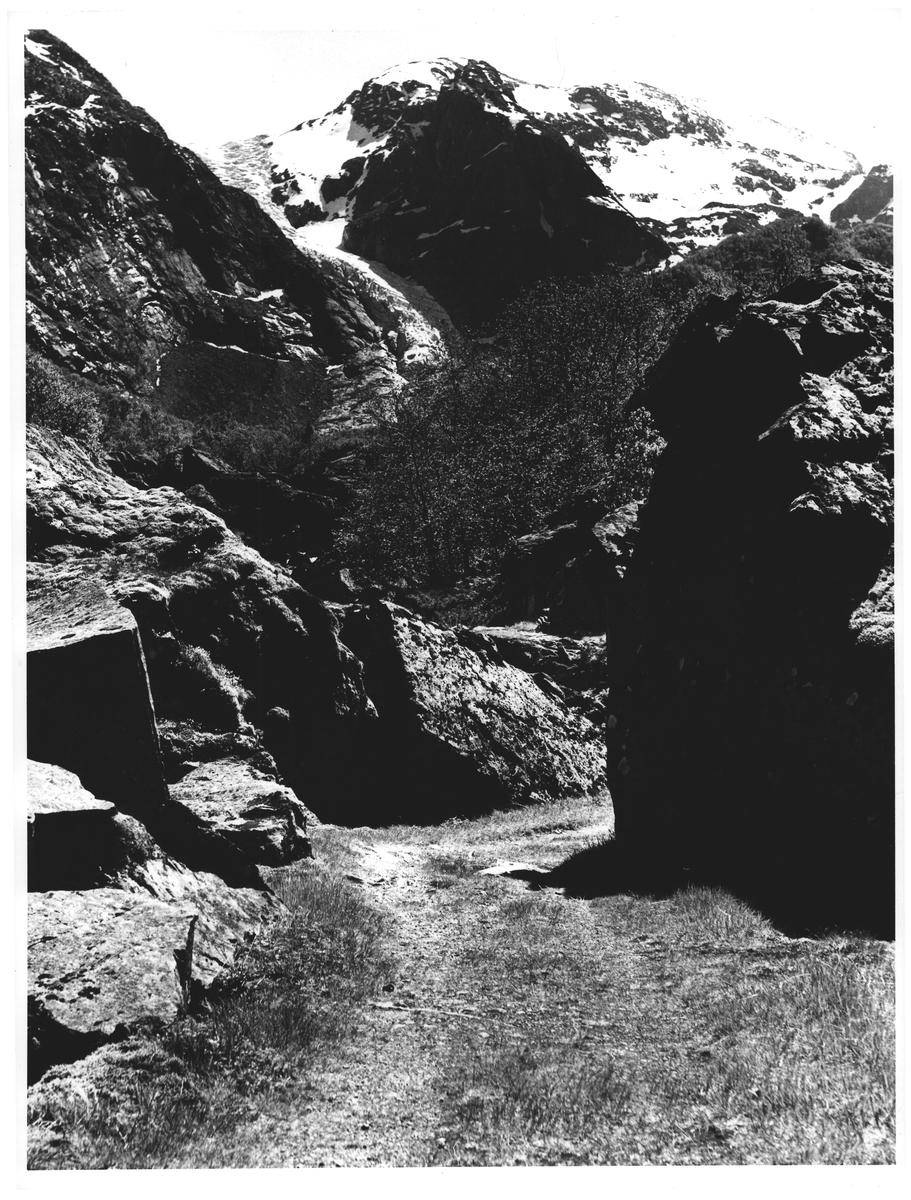En idyllisk kjerrevei fra Sunndal til Bondhusbreen