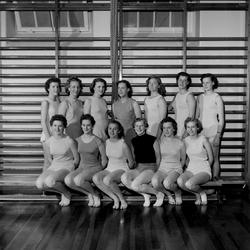 ABF Gymnastik